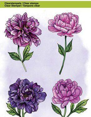 CraftEmotions clearstamps A6 – pioenroos 4 bloemen