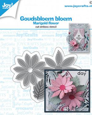 6002/1537 – Goudsbloem bloem