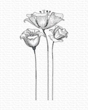 Fine-Lined Floral BG-119