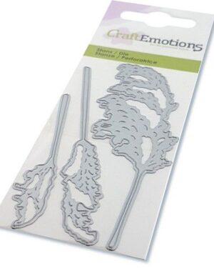 CraftEmotions Die – droogbloemen – pampasgras pluimen Card 5x10cm