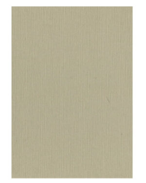 Taupe – 53