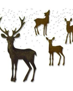 Sizzix Thinlits Die Set 5PK Winter Wonderland 662426 Tim Holtz