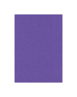 Violet – 18
