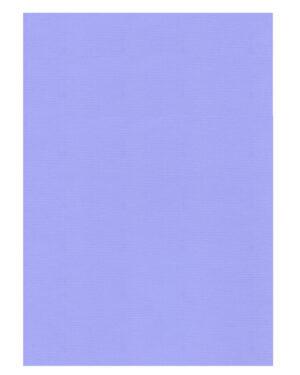 Lavender – 61