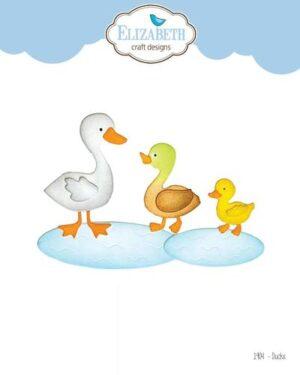 1904 – Ducks